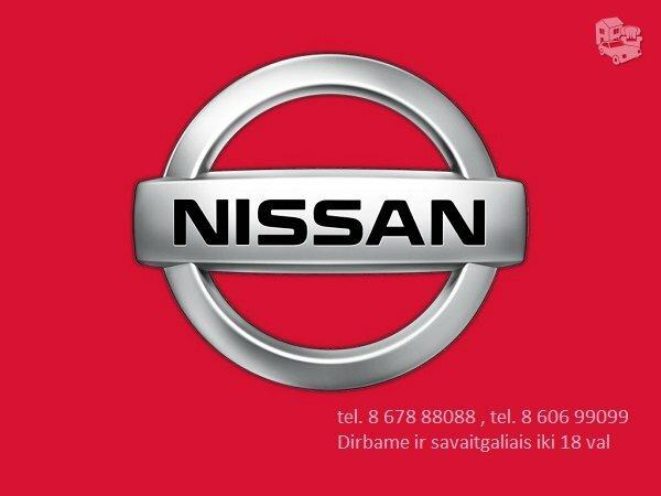 Nissan dalys, autodalys, Nissan dalimis