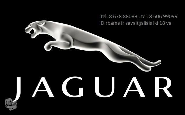 Jaguar dalys, autodalys, Jaguar dalimis