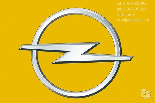 Opel dalys Vilniuje