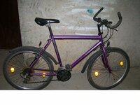 """Kalnų dviratis """"PANTHER"""""""